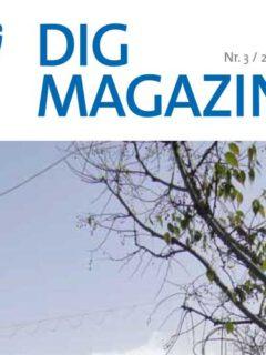 DIG Magazin 2012 Nr.3